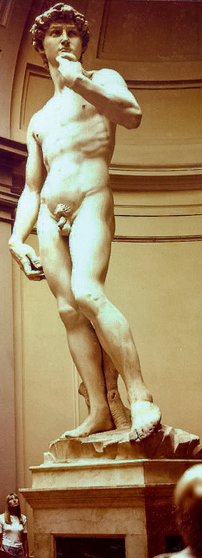Michaelangelo's statue of David